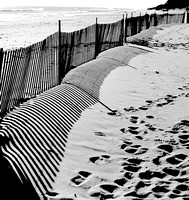 Beach Fence winter